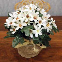 Искуственные цветы белые
